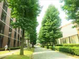 佳子様大学イメージ