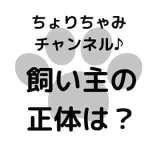 ちょりちゃみチャンネル-
